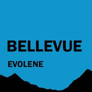 Appartement de vacances à louer à Evolène | Chalet Bellevue val d'Hérens (Valais - Suisse)