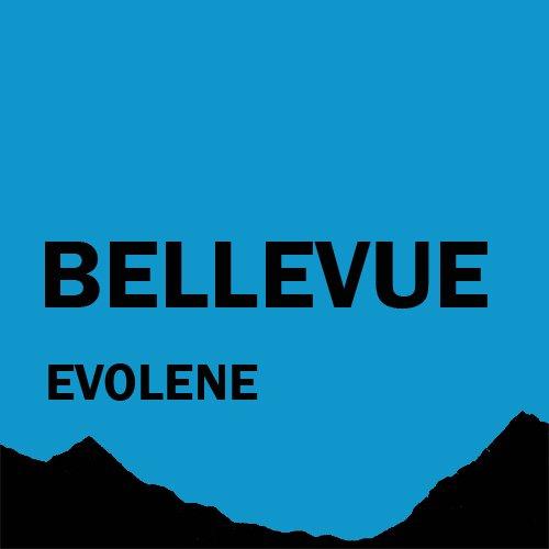 Chalet Bellevue           Evolène ¦ Appartement de vacances à louer ¦ Hérens Valais Suisse